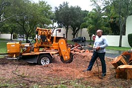 James Roman with Stump Grinder in South Miami